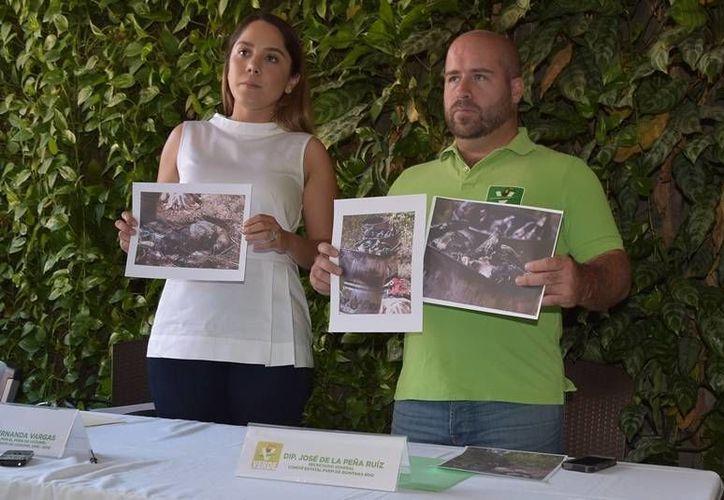 Integrantes del PVEM pedirán Sesa vigile la correcta operación del Centro. (Foto: Gustavo Villegas)
