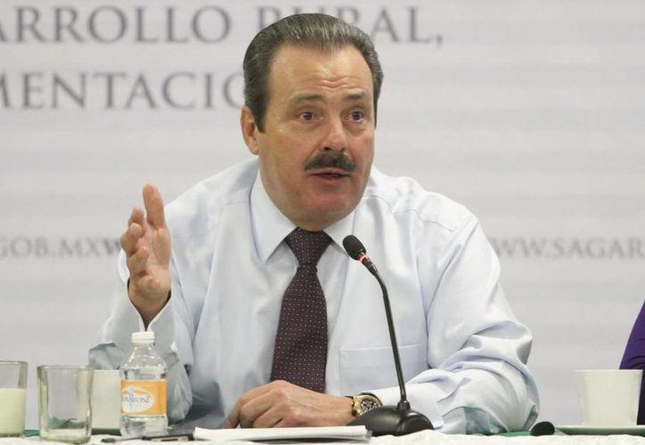 Enrique Martínez y Martínez consideró que este es el inicio de un proceso de revisión a fondo en la Sagarpa. (Archivo/Notimex)