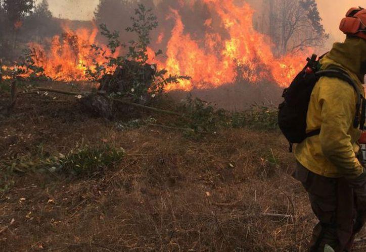 La norteña región italiana de Lombardia pidió declarar el estado de emergencia a causa de los incendios favorecidos por la sequía. (Contexto/Internet).