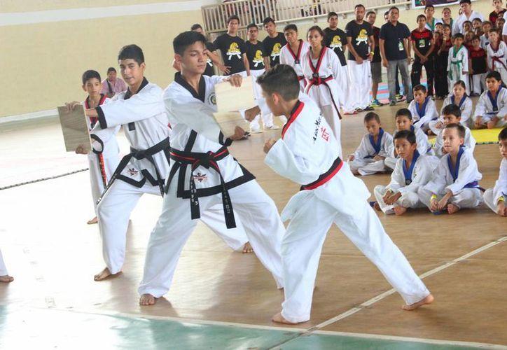 Sesión de combates y figuras en la ceremonia de apertura de la Copa Mérida de TKD. (Milenio Novedades)