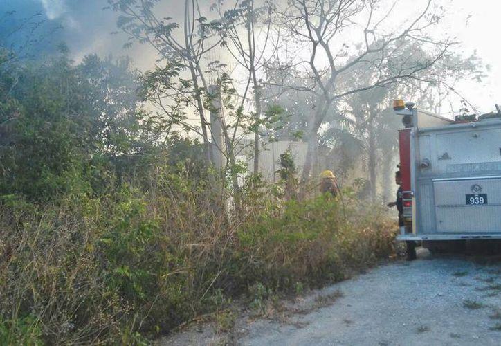 """El incendio """"Mi Ranchito"""" continúa con algunos troncos con pequeñas fumarolas. (Licety Díaz/SIPSE)"""