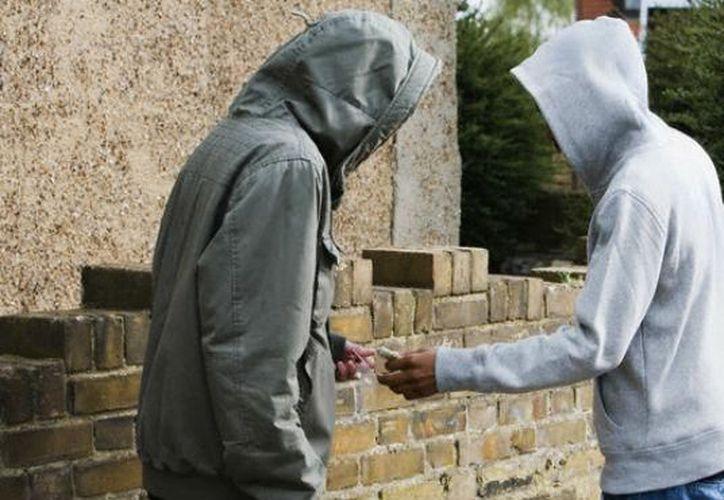 Las autoridades procedieron con el aseguramiento de la droga y la detención de los responsables. (Foto: Contexto/Internet).
