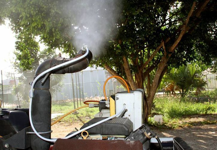 El principal vector es el mosquito aedes aegypti, por lo que las labores para controlar los brotes de dengue continúan. (Octavio Martínez/SIPSE)