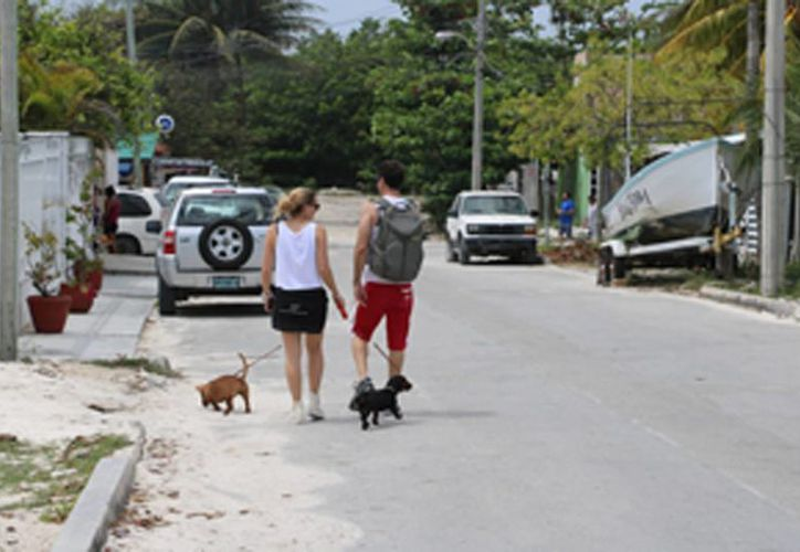 El evento tiene como objetivo la sana convivencia entre dueños con sus mascotas. (Miguel Ángel Ortiz/SIPSE)