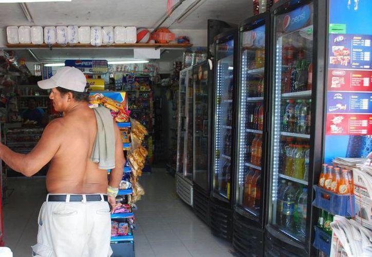 El alto consumo de energía eléctrica se debe al uso de congeladores, ventiladores y en algunos casos aire acondicionado. (Tomás Álvarez/SIPSE)