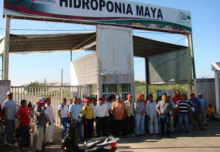 Los obreros demandan el pago de cuotas sindicales por más de un millón de pesos. (Manuel Salazar/SIPSE)