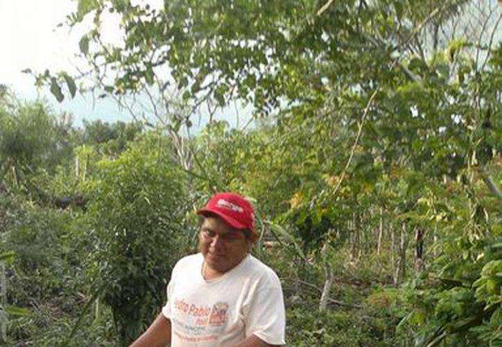 La Conafor inició el proceso de recepción de solicitudes de hombres y mujeres de comunidades rurales. (Redacción/SIPSE)