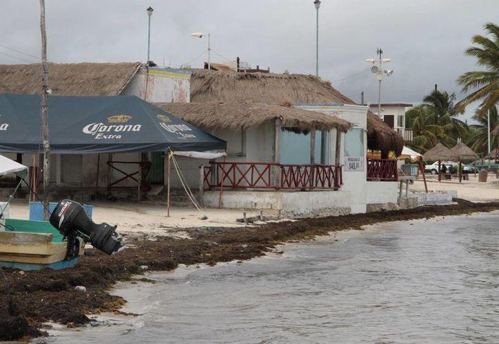 El desgaste y posterior recuperación de playas ha cambiado los límites de los arenales. (Tomás Álvarez/SIPSE)