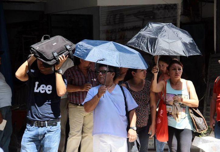 De acuerdo al Servicio Meteorológico Nacional, es muy posible que llueva por las tardes en Mérida todos los días, desde hoy y hasta el día 19 de octubre. (SIPSE)