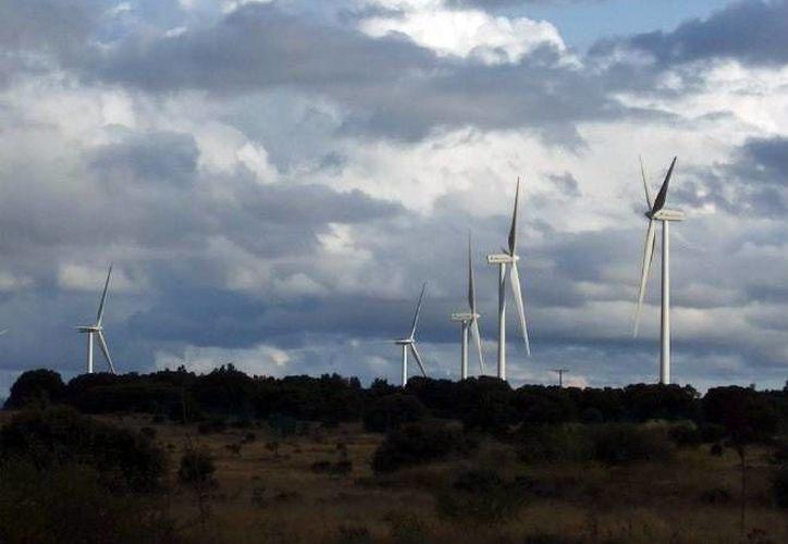 La empresa mexicana Vive Energía empezará en marzo la construcción del primer parque eólico en la Península de Yucatán. (Milenio Novedades)