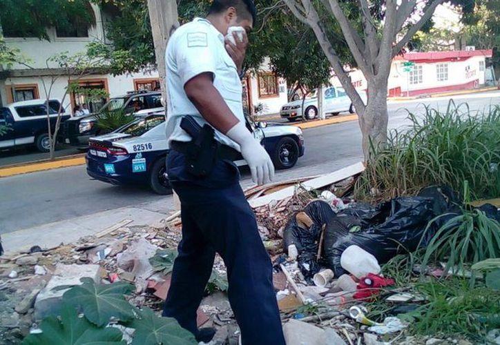 Policías revisaron un terreno de donde se desprendían olores fétidos. (Foto: Redacción)