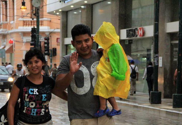 Personas de otros estados son los que más contratan seguros en Yucatán. (Milenio Novedades)