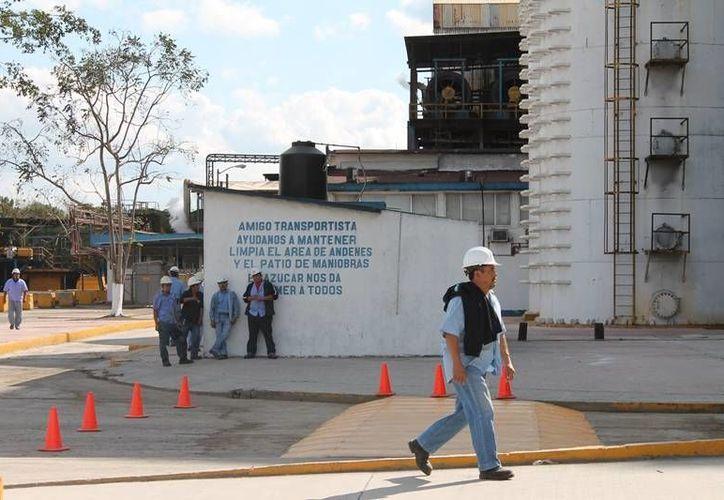 Las liquidaciones de algunos trabajadores también estarían siendo recortadas con las pérdidas. (Edgardo Rodríguez/SIPSE)