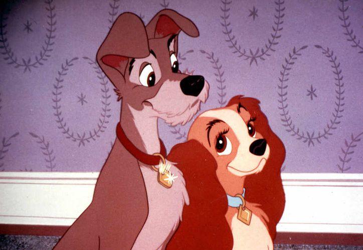 La Dama y el Vagabundo de Walt Disney Productions, contaba la historia de una Cocker Spaniel muy consentida llamada Lady. (Walt Disney Productions)