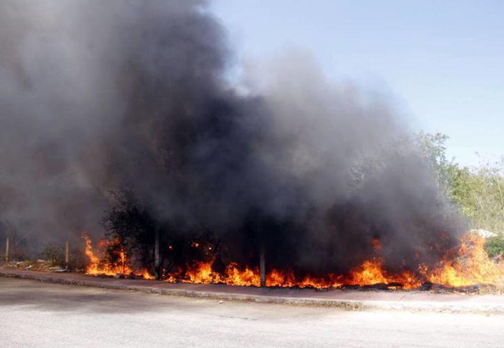 La Comisión Nacional Forestal señala que la incidencia humana es causante del 99 por ciento de los incendios forestales en México. (SIPSE)