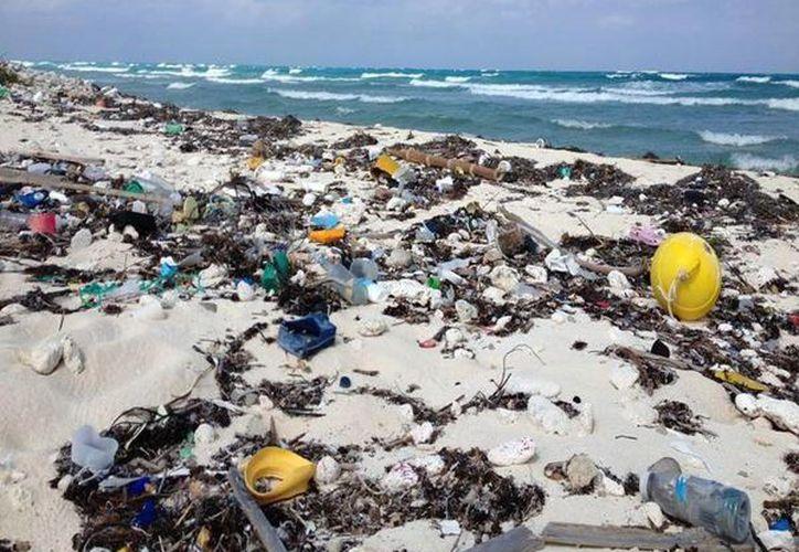 """La fecha tentativa a completar las acciones de recolección de residuos sólidos quedó establecida como a """"la brevedad posible"""" y en carácter de urgente. (Enrique Mena/SIPSE)"""