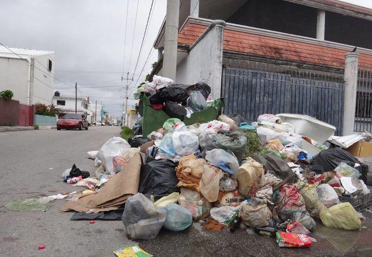 Otras regiones reportadas con mayores cantidades de desechos son la Regiones 218, 229, 228, 221 y 218, de acuerdo con las denuncias en www.sipse.com. (Israel Leal/SIPSE)