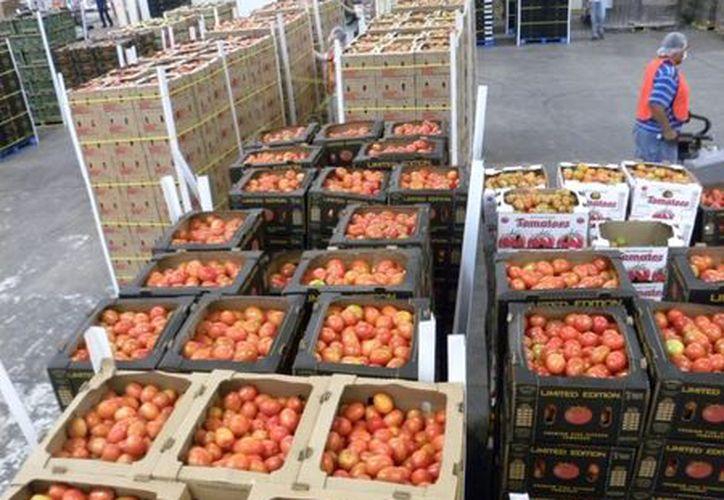 México es el principal proveedor de productos agrícolas de Estados Unidos. (Agencias)