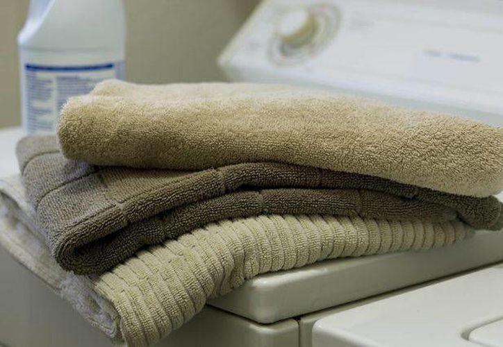 Las toallas son un campo de cultivo ideal para los gérmenes porque contienen muchos de los requisitos para la vida microbiana. (Internet)