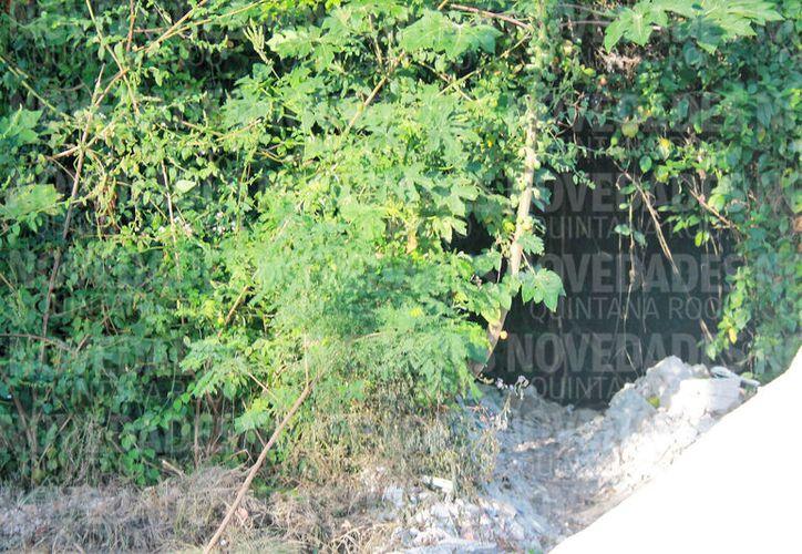 Autoridades reconocen que poco a poco, han invadido la zona del cenote. (Javier Ortiz/SIPSE)