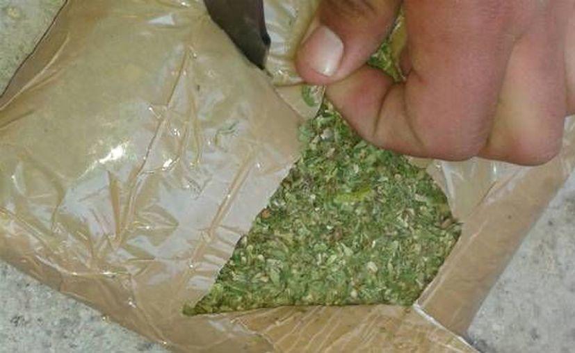 En total la mujer detenida en Iztapalapa llevaba 10 kilos de marihuana. (Agencias)