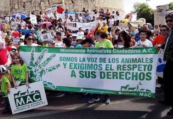 MAC convoca a la sociedad yucateca a un cambio de mentalidad acerca de los animales. (Foto tomada del Facebook de MAC)