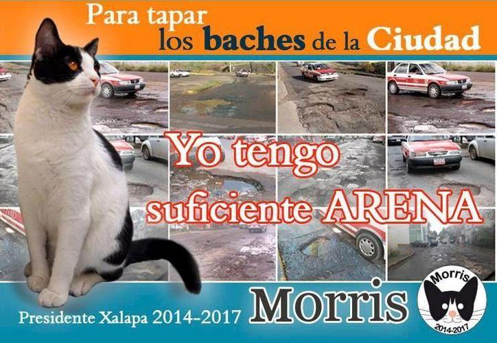 Esta es una de las publicidades acerca del candigato Morris. (m-x.com.mx/Archivo)
