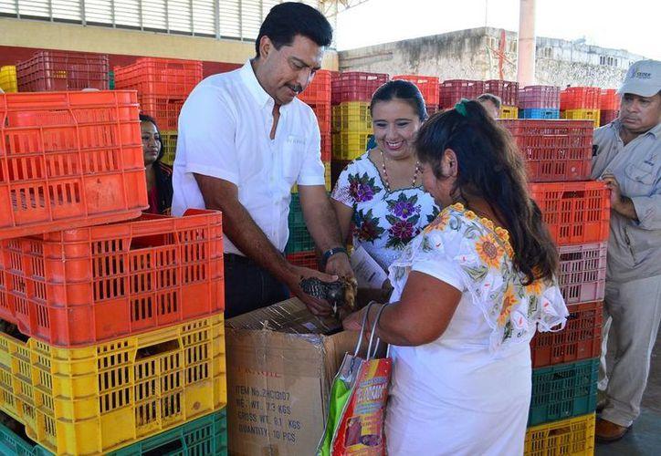 El titular de Desarrollo Rural (Seder), Juan José Canul Pérez, entregó este jueves 2 mil 350 paquetes de apoyos del Programa Producción Pecuaria de Traspatio, a familias de Akil y sus comisarías. (Foto cortesía del Gobierno de Yucatán)