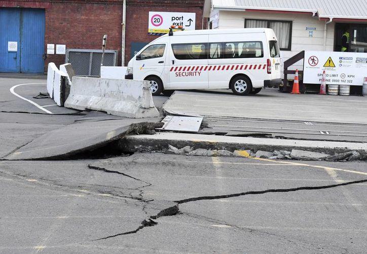 Imagen de las fisuras en el pavimento de una carretera en el puerto de Wellington, este domingo, después de un terremoto de 7.8 que golpeó la zona sur de Nueva Zelanda. (Ross Setford / SNPA vía AP)