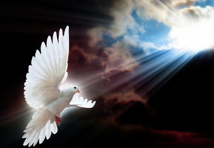 El Espíritu Santo nos anima al servicio de la verdad , la paz es un don mesiánico muy diverso de cómo la proporciona el mundo  estos deberán ser siempre los elementos vitales de una verdadera comunidad cristiana. (tiempo.com.mx/Foto de contexto)