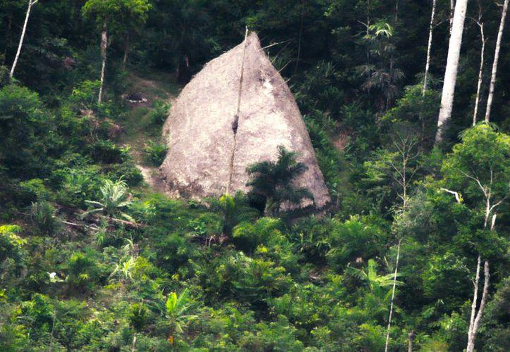 """Esta imagen difundida por la Fundación Nacional del Indio muestra una """"maloca"""", una casa grande en Vale do Javari, estado de Amazonas, en Brasil. (AP)"""