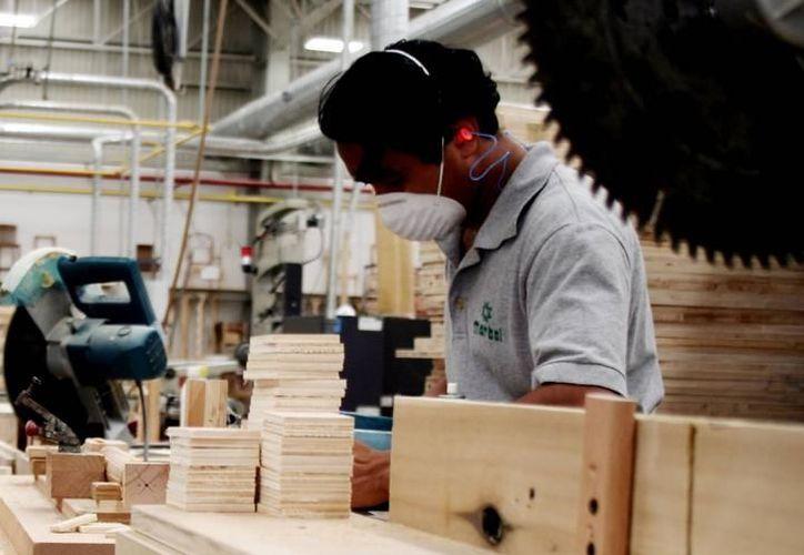 Casi un cuarto de las empresas encuestadas señaló que ampliará su plantilla laboral de abril a junio. (SIPSE)