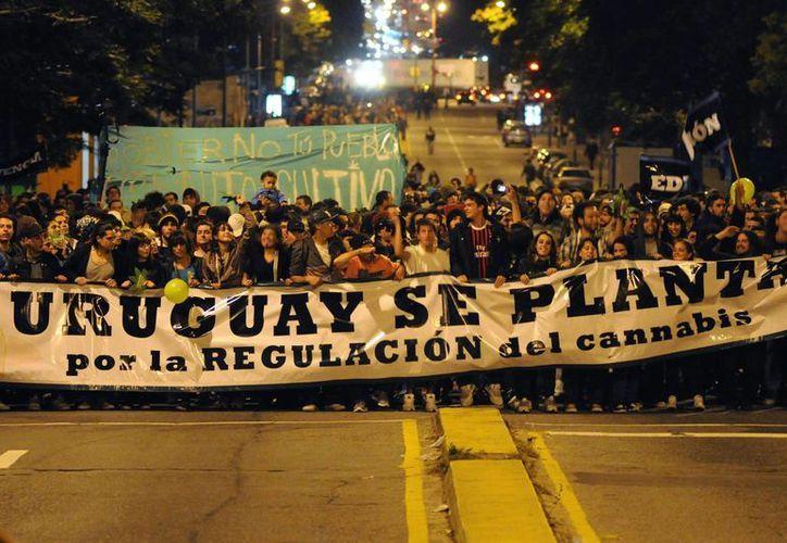 """Las organizaciones favorables al cultivo y consumo de marihuana en Uruguay pidieron a las autoridades del país suramericano que resuelvan """"rápidamente"""" la aprobación del proyecto. (EFE)"""
