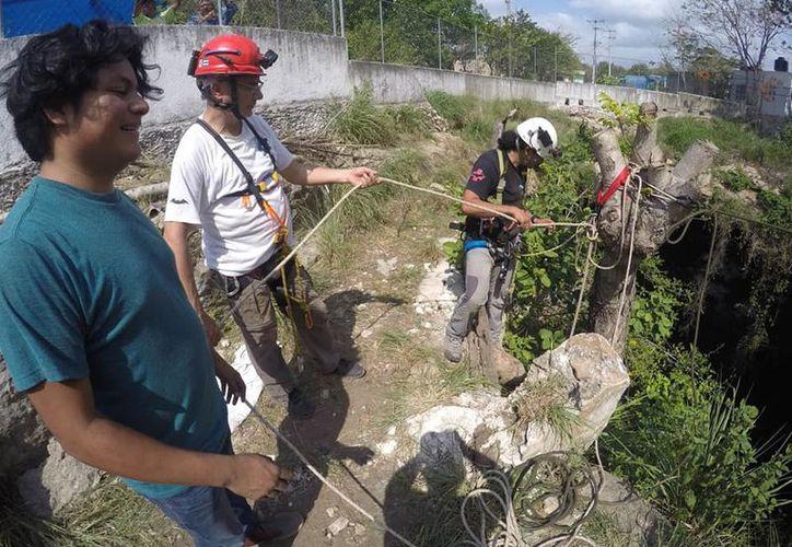 Esta investigación no sólo se limita al estado de Quintana Roo, también o han realizado los 20 integrantes de la organización en cuevas de Yucatán y Campeche. (Octavio Martínez/SIPSE)