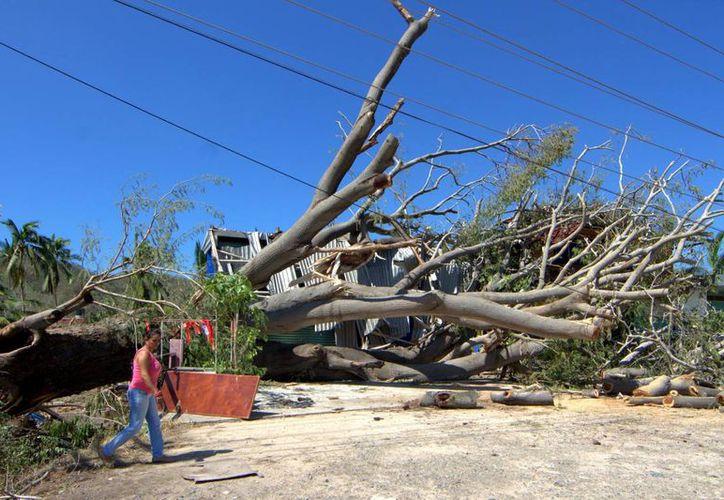 Se calcula que hay hasta 10 mil personas afectadas por el paso del huracán 'Patricia'. (Notimex)
