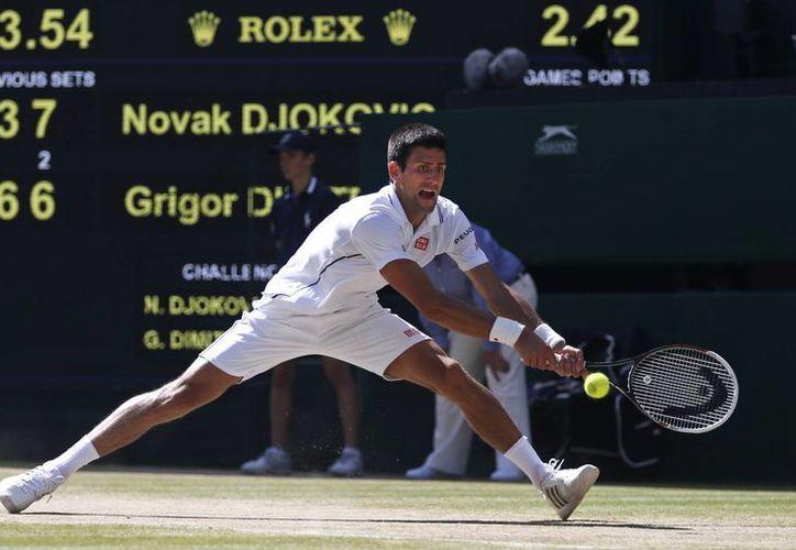 El serbio Djokovic busca en la final de Wimbledon su séptimo título de Grand Slam. (Foto: AP)