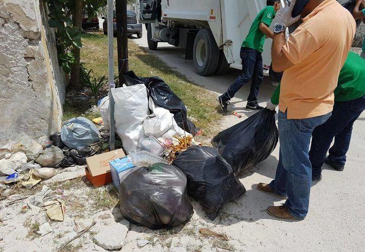 Este martes se llevó a cabo la primera campaña de descacharrización en lo que va del año en Progreso. (Foto: Gerardo Keb/Milenio Novedades)