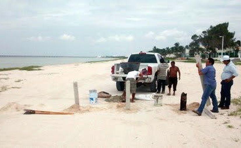 Protegen la anidación de las tortugas en una zona particular de Progreso. (Foto: Milenio Novedades)