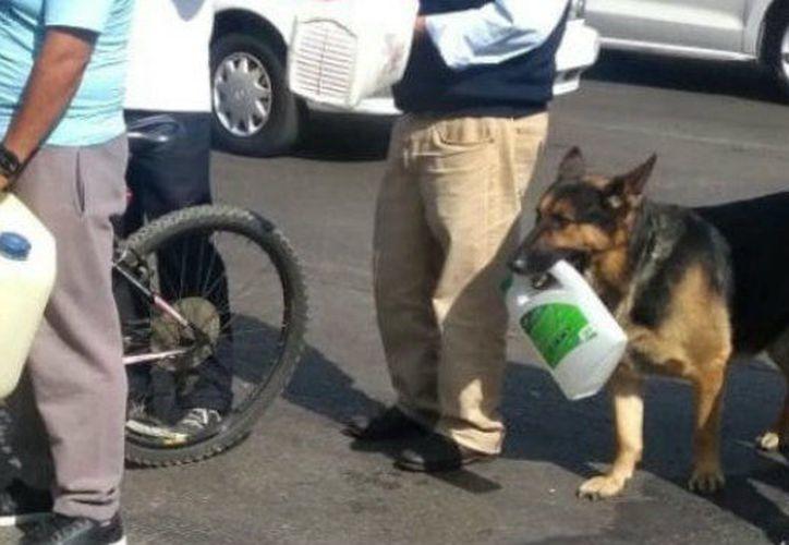 Los mexicanos se identifican por mostrar su humor, incluso en los momentos más difíciles. (Foto: Contexto/Internet)