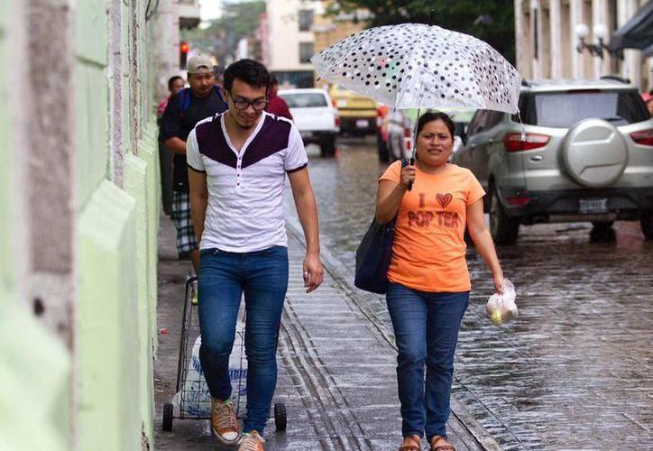 Una posible onda tropical arribaría el domingo a la Península, lo que como consecuencia traería precipitaciones a la entidad. (Archivo/ Milenio Novedades)