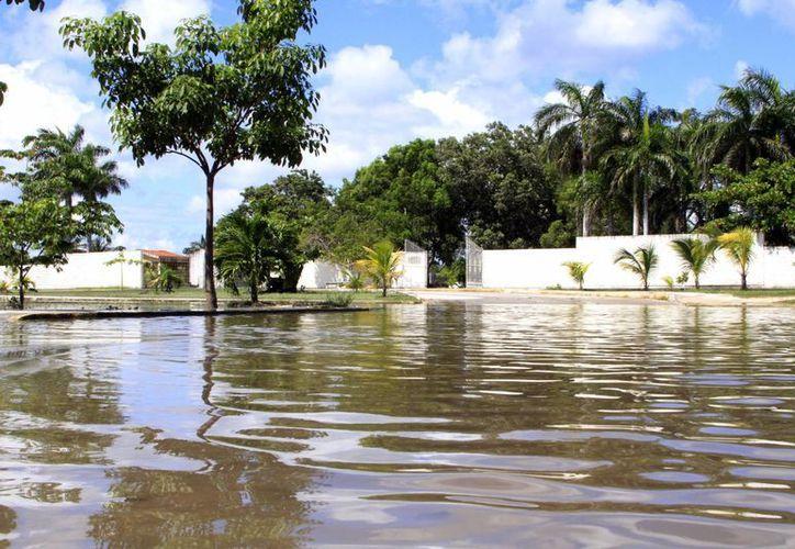 Las autoridades sanitarias exhortaron a la población evitar introducirse en zonas donde haya agua estancada. (Ángel Castilla/SIPSE)