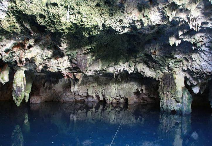 En el municipio de Benito Juárez existen 100 cenotes con problemas de contaminación. (Archivo/SIPSE).