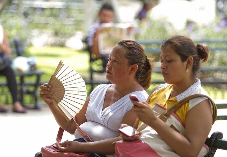 En la Península de Yucatán se pronostican temperaturas templadas por la mañana y noche, y calurosas durante el día. (Archivo/Notimex)