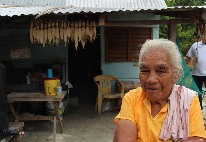 Las personas tienen sus casas forradas de madera y con techo de lámina, por lo que se transfiere la temperatura gélida. (Carlos Castillo/SIPSE)