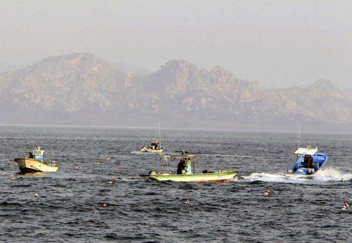 Barcos pesqueros surcoreanos transitan en aguas de su país cerca del límite marítimo intercoreano. (Archivo/EFE)