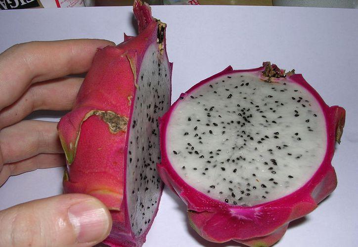 Van frutas de la región a la conquista de Europa y Asia. (Imagen de internet)