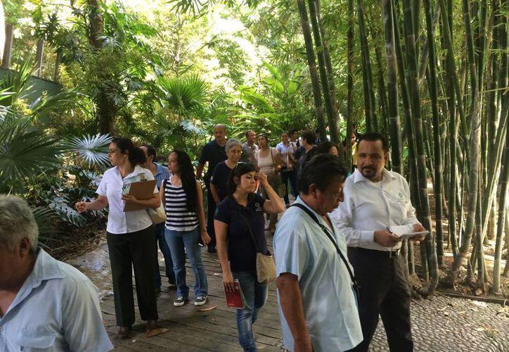 Las festividades para el aniversario del Ecosur tendrán el enfoque de dar a conocer la flora, fauna de la región a los estudiantes. (Claudia Martín/SIPSE)