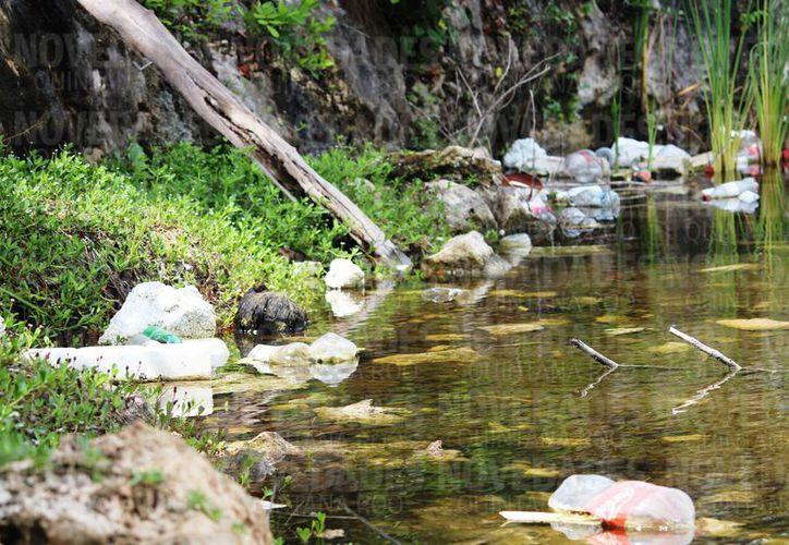 Un cenote es utilizado por pobladores del predio invadido en la zona de In House, Playa del Carmen, como basurero. (Octavio Martínez/SIPSE)
