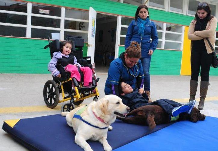 La canoterapia permite la rehabilitación de personas con discapacidad física, mental y en aquellas con problemas emocionales. Imagen de contexto solo para fines ilustrativos. (ww.diarioeldia.cl)
