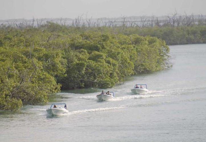 Los pescadores se esconden de los vigilantes para hacerse de las suyas. (Archivo/SIPSE)